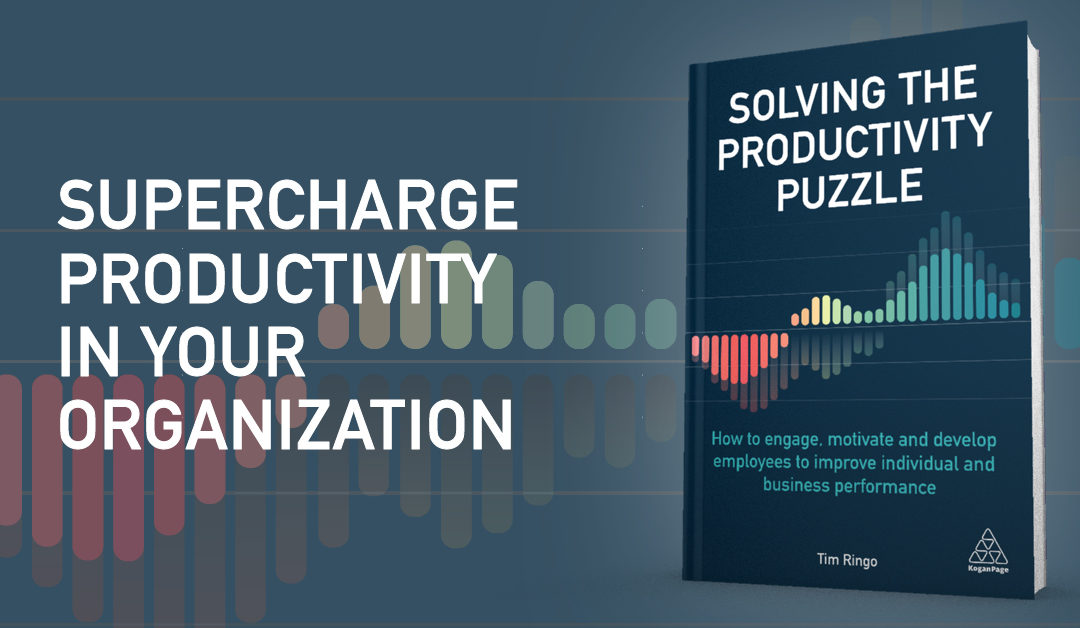 Ten Steps to Solve the Productivity Puzzle